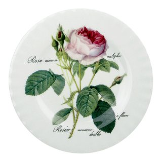 Roy Kirkham Redoute Roses
