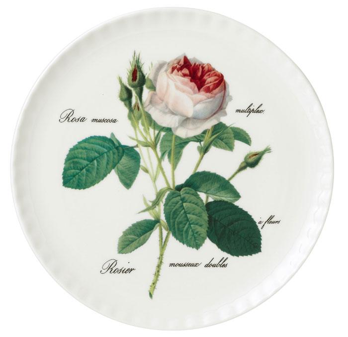 1bf80eb64e2 Redoute Rose Rundt Kagefad med Rose 31 cm