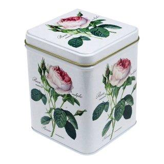 Debora Pope & Tea & Redoute Roses