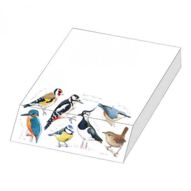 British Birds Papir Blokk 9,5x13,5x 2,0 cm