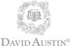 Mærke: David Austin Roses Ltd